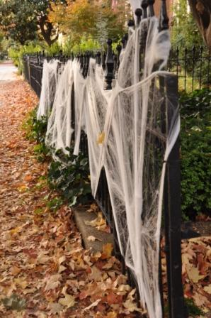 Spider fence