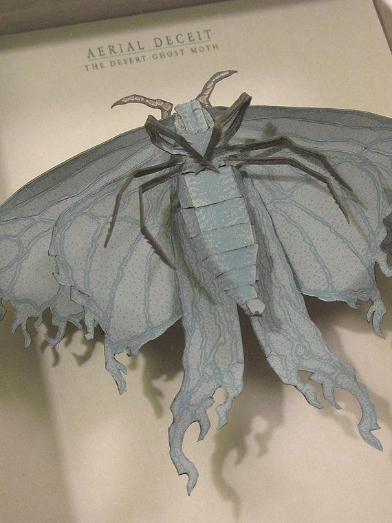 Moth diorama